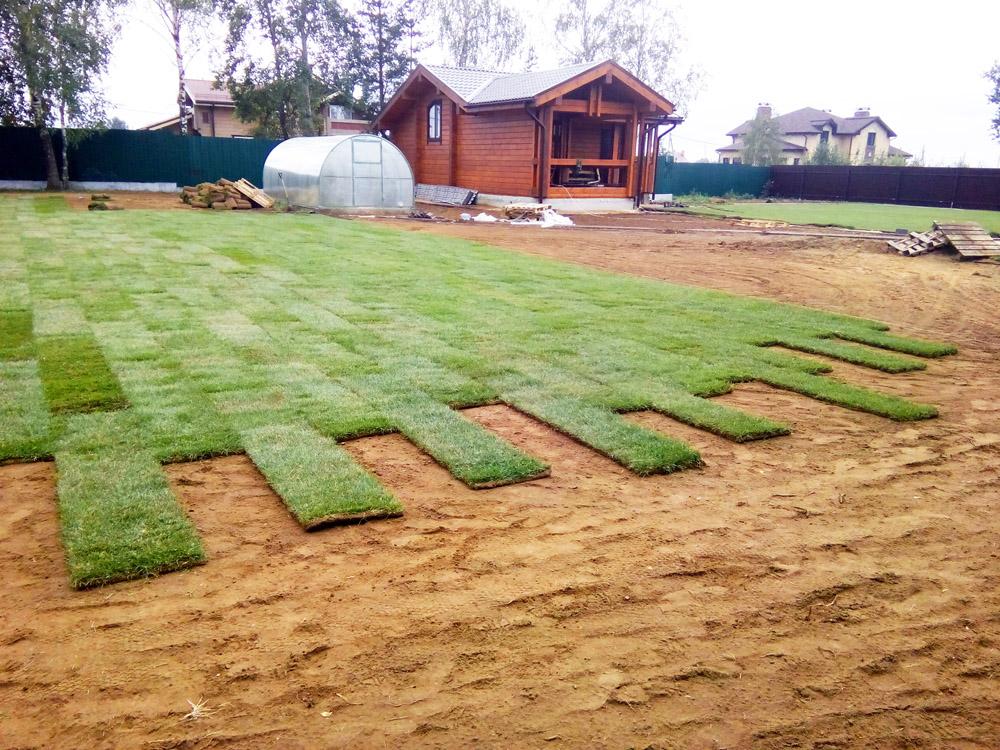 Как правильно положить искусственный газон на даче своими руками 62